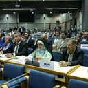 U. N. Environment Assembly approves Dust Storm Resolution